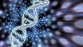 DNA rozwiązania Fotografia Stock