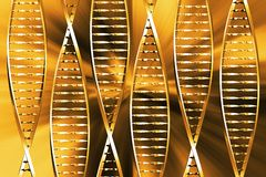 DNA- samenvatting stock illustratie