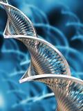DNA- samenvatting Stock Fotografie