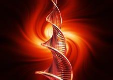 DNA- samenvatting Royalty-vrije Stock Afbeeldingen