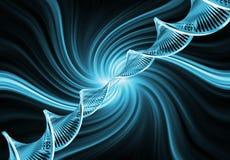 DNA- samenvatting Stock Afbeelding