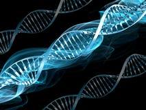 DNA- samenvatting Stock Foto