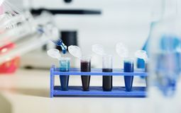 DNA samples are loaded  plate for PCR analysis Royalty Free Stock Photos