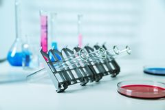 DNA samples are loaded  plate for PCR analysis Stock Photos