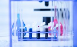 DNA samples are loaded plate for PCR analysis. Stock Images