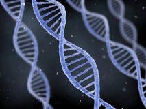 DNA-Schnüre auf dunklem Hintergrund Stockfoto