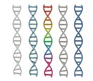 DNA-schroef of DNA-structuur Royalty-vrije Stock Foto