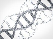 DNA-schroef of DNA-structuur Stock Afbeeldingen