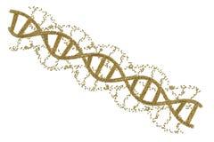 DNA-schroef of DNA-structuur Stock Foto's