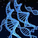 DNA-Schroeven Stock Afbeeldingen