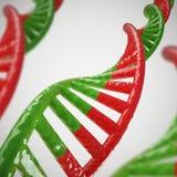DNA schwemmt Baumuster 3D an Lizenzfreies Stockfoto