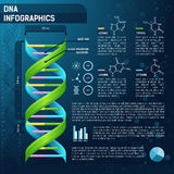 DNA for science infographics. Vector DNA for science infographics, scientific infographics template with text Stock Photos