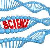 DNA Science Word Biology Learning Education. The word Science in a DNA strand to illustrate education and learning of biology and heredity Stock Photo