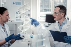 Concentrated scientists studying complicated structure of the human DNA royalty free stock photography