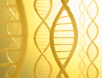 DNA Sequence. S in parallel with a light in the background Royalty Free Stock Photos