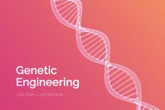 DNA sequence. Wireframe DNA molecules structure mesh. DNA code editable template. Science and Technology concept. Vector royalty free illustration