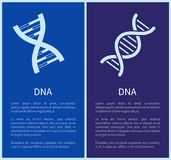 DNA Set of White Spirals Isolated on Blue Backdrop Royalty Free Stock Image