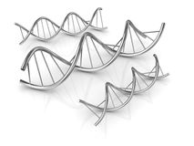 Dna Shape Royalty Free Stock Photography