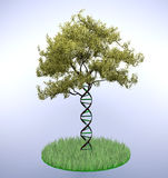 Dna shaped tree trunk stock illustration