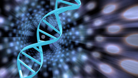 DNA Solutions Royalty Free Stock Photo