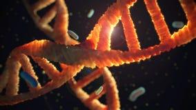 DNA sospeso in plasma Fotografia Stock Libera da Diritti