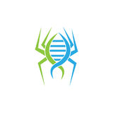 DNA spider Logo Symbol. vector illustrator. EPS file available. see more images related Stock Images