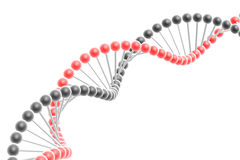 Dna spiral Stock Photos