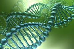 Dna spiral Stock Image