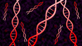 Dna spiral Stock Images