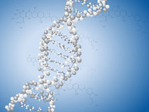DNA spiral Royalty Free Stock Image