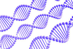 Dna spirals Stock Image