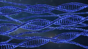 Dna spirals Royalty Free Stock Image