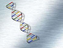 DNA on Steel Royalty Free Stock Photo