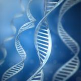 DNA-Stränge Lizenzfreies Stockfoto