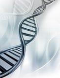 DNA-Stränge Stockbilder