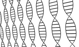 DNA-Stränge Stockfotografie