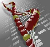 DNA strand Stock Photography