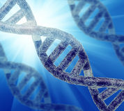 DNA strand Royalty Free Stock Image