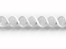 DNA strand. White DNA strand with shadow Royalty Free Stock Photo