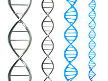 DNA Strand. In 3D - Abstract illustration of DNA double helix, isolated on white Stock Photos