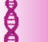 Dna strand. Pink dna strand Royalty Free Stock Photography