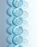 DNA strand. Blue DNA strand on a light background Royalty Free Stock Photo