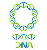 DNA Strand and Seamless Royalty Free Stock Photo