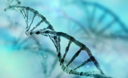 Dna strand. Close up with a dna strand Royalty Free Stock Images