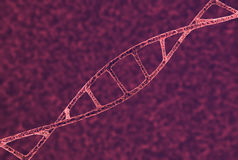 DNA Strand Closeup. 3D illustration of a microscopic view of a dna strand, inside a chromosome Stock Photo