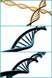 DNA Strand Collage Stock Images