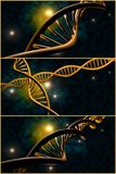 DNA Strand Collage Royalty Free Stock Photos