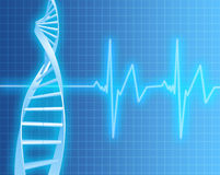 DNA Strand and Heart Rate. EKG Heartrate monitor with DNA strand Royalty Free Stock Image