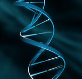 DNA strand illustration Stock Photos