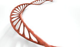 DNA Strand Micro Royalty Free Stock Image
